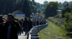 Migrants walk towards Hungarian border after arriving in Botovo